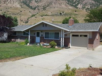 Brigham City Single Family Home For Sale: 620 Cherry Dr
