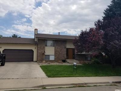Pleasant Grove Single Family Home For Sale: 580 E 930 S
