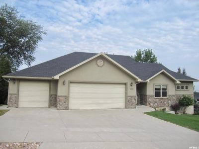 Logan Single Family Home For Sale: 1179 Circle View Dr