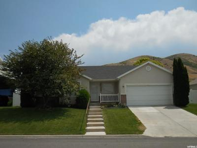 Payson Single Family Home For Sale: 1529 S 30 E