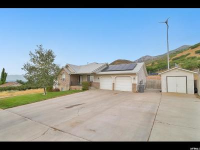 Santaquin Single Family Home For Sale: 238 N Cherry