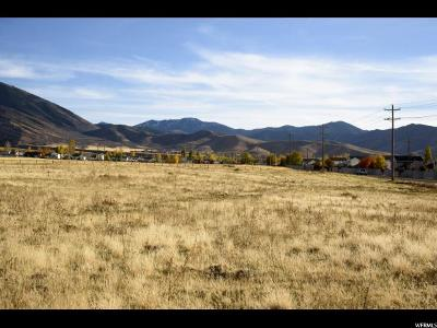 Tooele County Residential Lots & Land For Sale: 1505 E Meadowbrook Dr