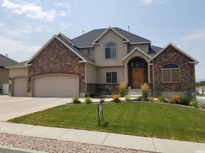 Salem Single Family Home For Sale: 862 S 270 E