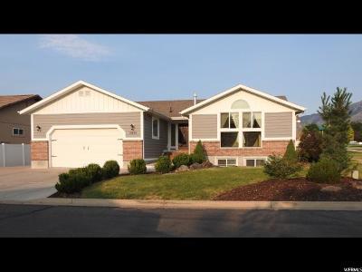 North Logan Single Family Home For Sale: 2630 N 425 E