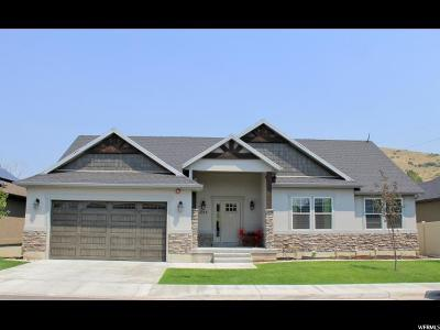 Payson Single Family Home For Sale: 1217 S 550 E