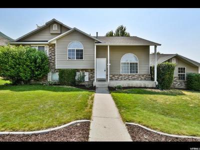 Pleasant Grove Single Family Home For Sale: 847 S 1450 E