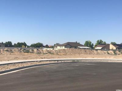 Tooele County Residential Lots & Land For Sale: 737 E Clover Gate Ln