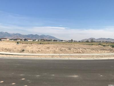 Tooele County Residential Lots & Land For Sale: 704 E Clover Gate Ln