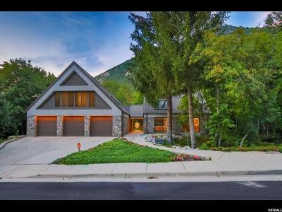 Sandy Single Family Home For Sale: 3981 Alpine Valley Cir