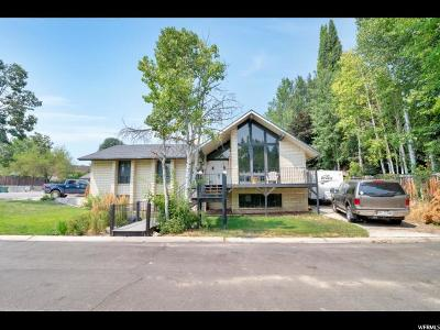 Orem Single Family Home For Sale: 597 Robin Rd