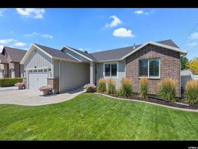 Sandy Single Family Home For Sale: 989 E Stonefield Rd