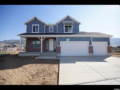 Davis County Single Family Home For Sale: 1424 W 1875 N