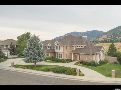 Sandy Single Family Home For Sale: 9093 Canyon Gate Cir S