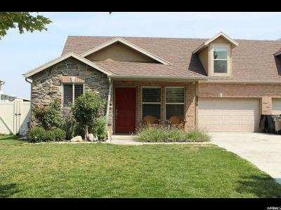 Springville Single Family Home For Sale: 696 W 175 S