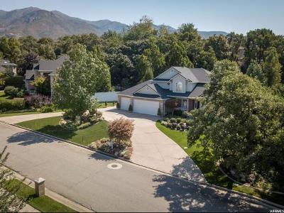 Layton Single Family Home For Sale: 2082 E. Hunters Glen Dr E