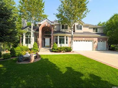 Sandy Single Family Home For Sale: 2351 E Autumn Ridge Dr S