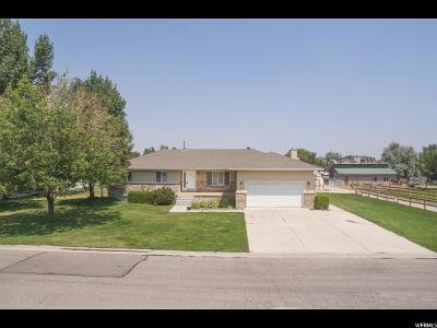 Draper Single Family Home For Sale: 386 W Redberry Rd S