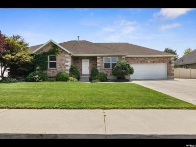 Orem Single Family Home For Sale: 855 W 330 S
