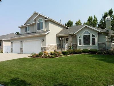 Murray Single Family Home For Sale: 481 E Spruce Glen Rd S