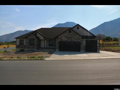 Salem Single Family Home For Sale: 1045 S 850 E