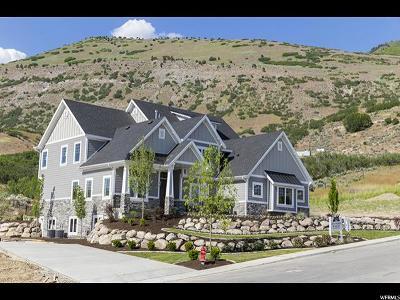 Lindon Single Family Home For Sale: 689 E 770 N
