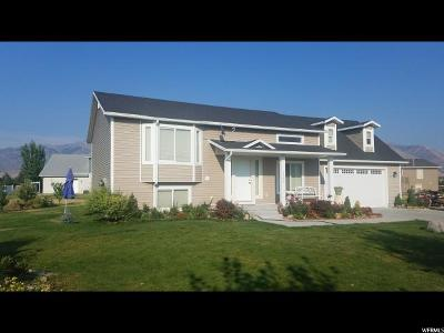 Nibley Single Family Home For Sale: 3260 S 1525 W