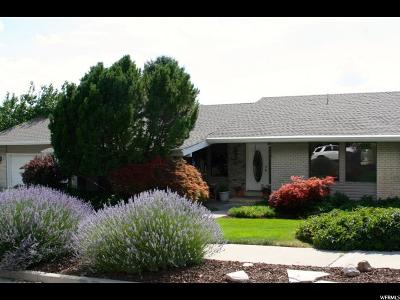 Provo Single Family Home For Sale: 3813 N Foothill Dr E