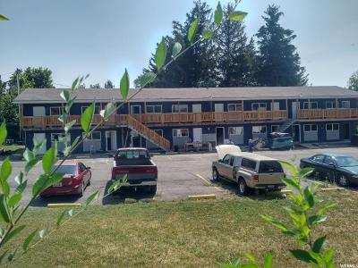 Logan Multi Family Home For Sale: 331 N 400 E