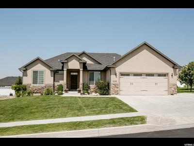 Smithfield Single Family Home For Sale: 1067 E 340 S