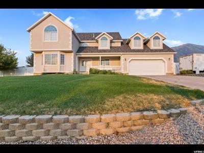 Elk Ridge Single Family Home Backup: 218 N Columbus Ln