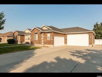 South Jordan Single Family Home For Sale: 11527 S Jordan Farms Rd