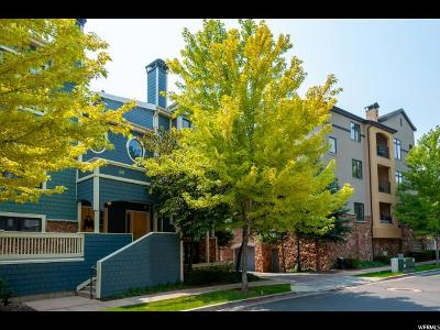 Provo Townhouse For Sale: 137 W Village Ln N