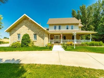 Mapleton Single Family Home For Sale: 1320 W 800 N
