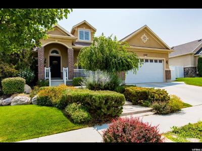 Riverton Single Family Home For Sale: 13587 S Bluewing Way W