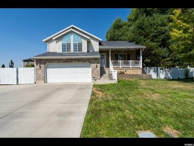 Pleasant Grove Single Family Home For Sale: 843 N 1110 W