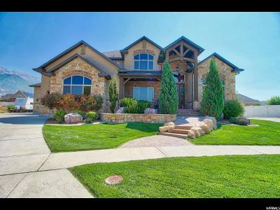 Orem Single Family Home For Sale: 918 W 1670 N