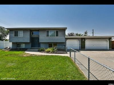 Sandy Single Family Home For Sale: 9790 S 575 E