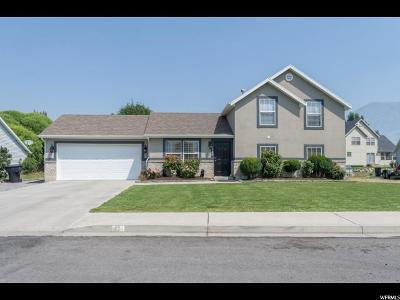 Springville Single Family Home For Sale: 1524 W 1065 S