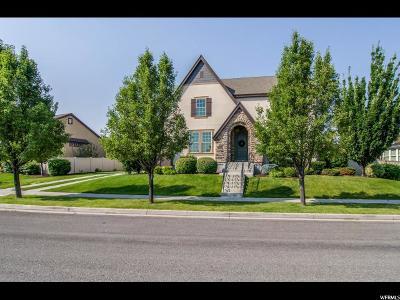 South Jordan Single Family Home For Sale: 10592 S Iron Mountain Dr W