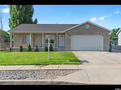 Riverton Single Family Home For Sale: 4979 W Little Water Peak Dr S