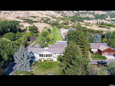 Pleasant Grove Single Family Home For Sale: 48 N 1400 E