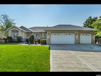 Riverton Single Family Home For Sale: 12125 S Lampton View Dr