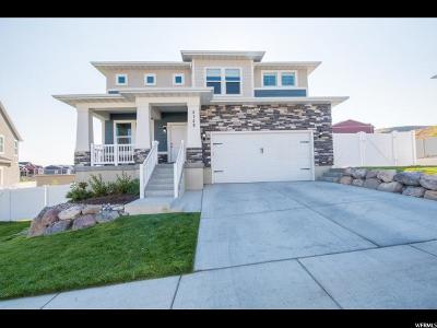 Lehi Single Family Home For Sale: 4149 N 900 W #530