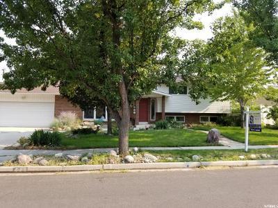 Sandy Single Family Home For Sale: 449 E Floyd Dr
