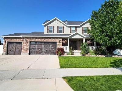 Riverton Single Family Home For Sale: 5114 W Cloudywing Way