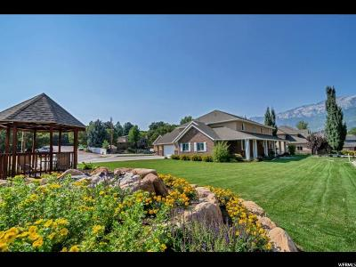 Alpine Single Family Home For Sale: 392 S Alpine Dr