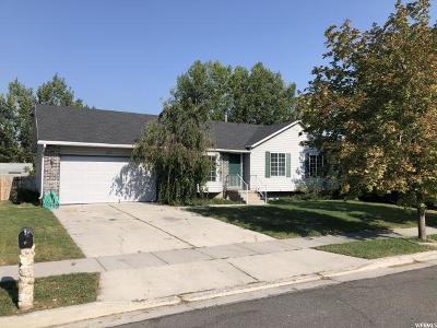 Riverton Single Family Home For Sale: 13723 S Homestead Ln
