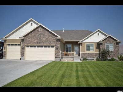 Eagle Mountain Single Family Home For Sale: 2551 E Riley Dr.