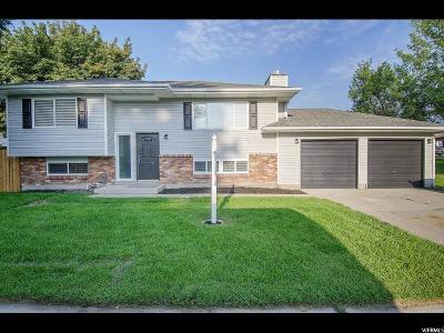 Sandy Single Family Home For Sale: 9653 S 1040 E