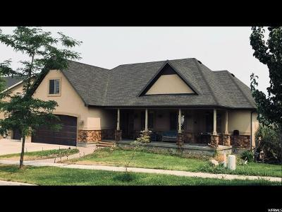 Saratoga Springs Single Family Home For Sale: 2318 S Wesson Dr